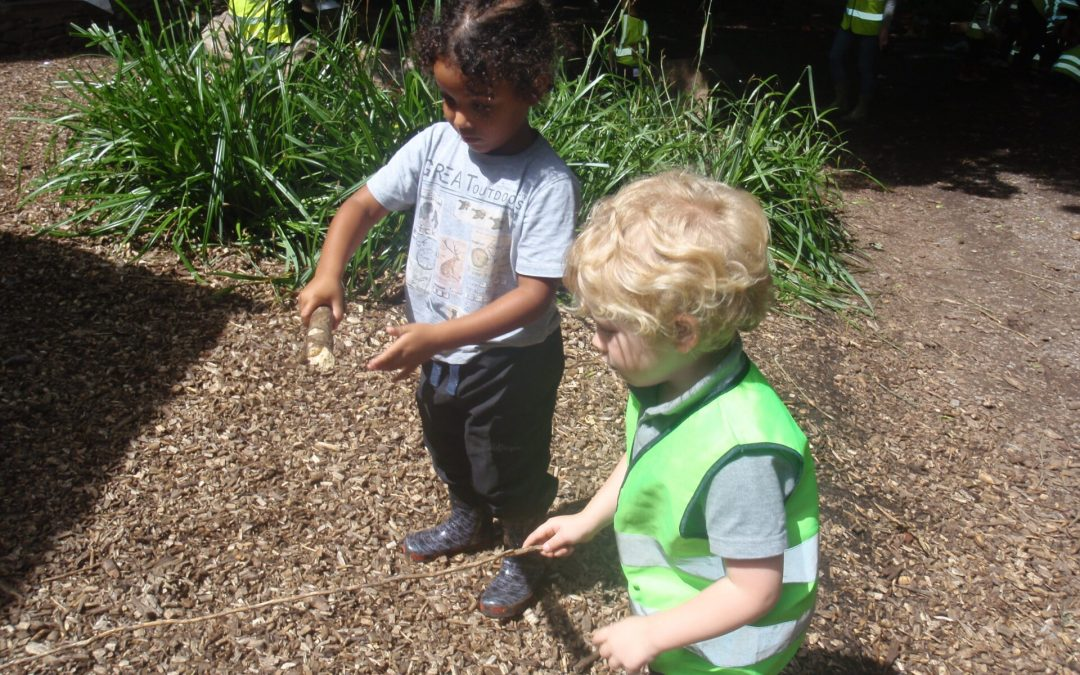 Forest School 3 July 2017
